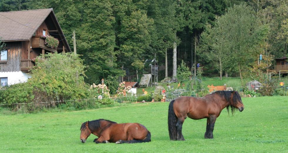 Herbstbunter Bauernhofurlaub<br> im Familiennest Pauli