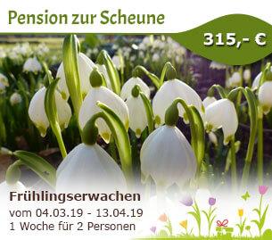 Frühlingserwachen nicht verpassen - Pension Zur Scheune