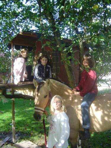 Pferde und Kinder sieht man auf dem Traberhof täglich