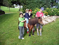 Ponyreiten auf dem Grub-Daniel-Hof