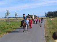 Reiten am Rügen-Ferienhof