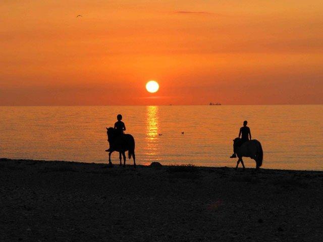 Reiten am Strand in der Nähe des Ferienhof Seelust der Familie Hinz