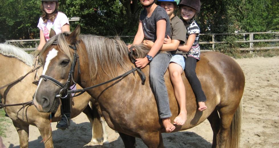 An der Ostseeküste auf dem Ferienhof Boyens einen wunderschönen Familienurlaub verbringen