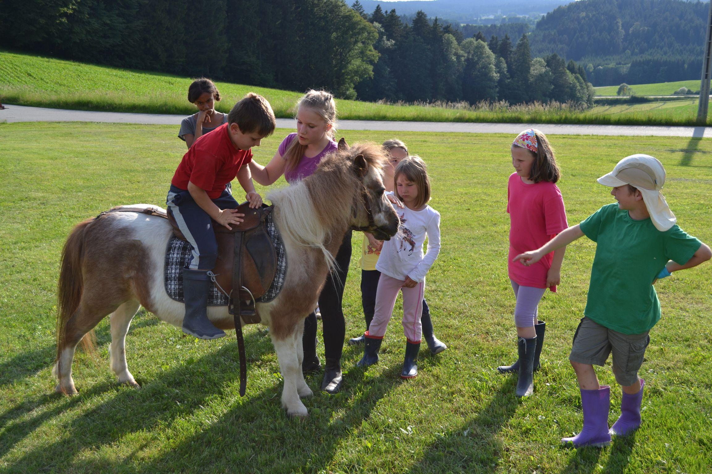 Reiten auf dem Pony auf dem Landhaus Altweck