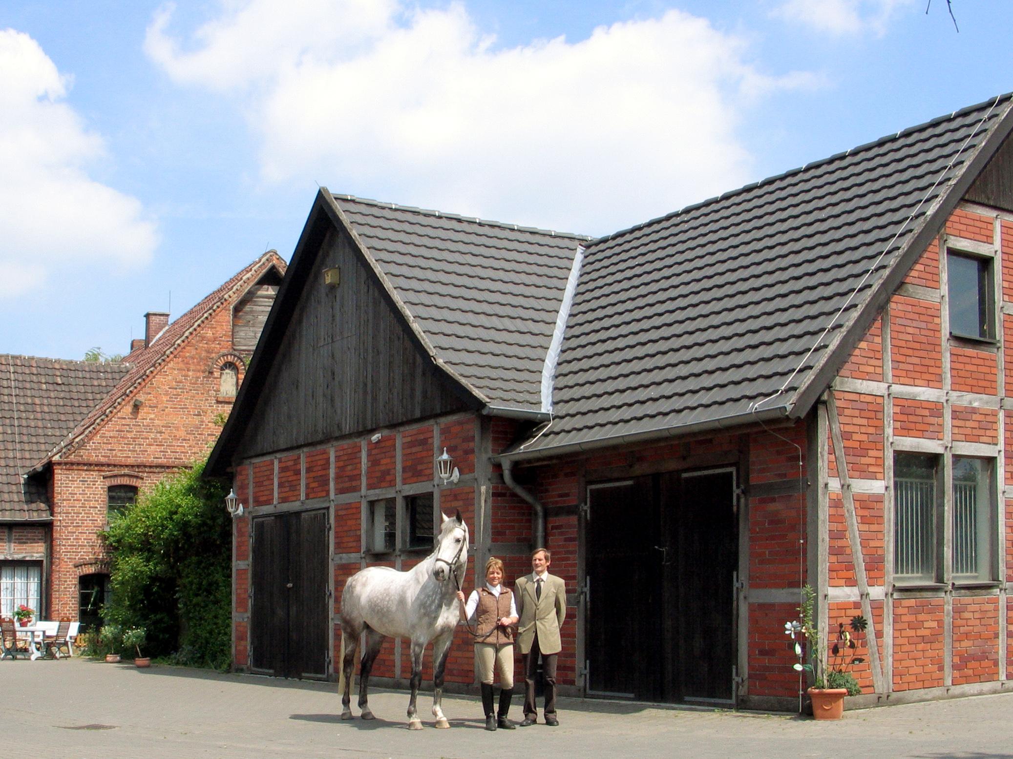 Reiten auf  der Vita-Farm Bergmann-Scholvien