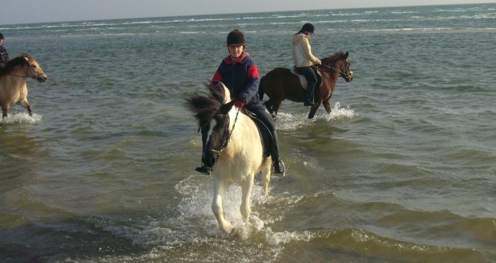 Reiten und Herbstwandern für Familien auf dem Ferienhof Schnoor an der Ostsee