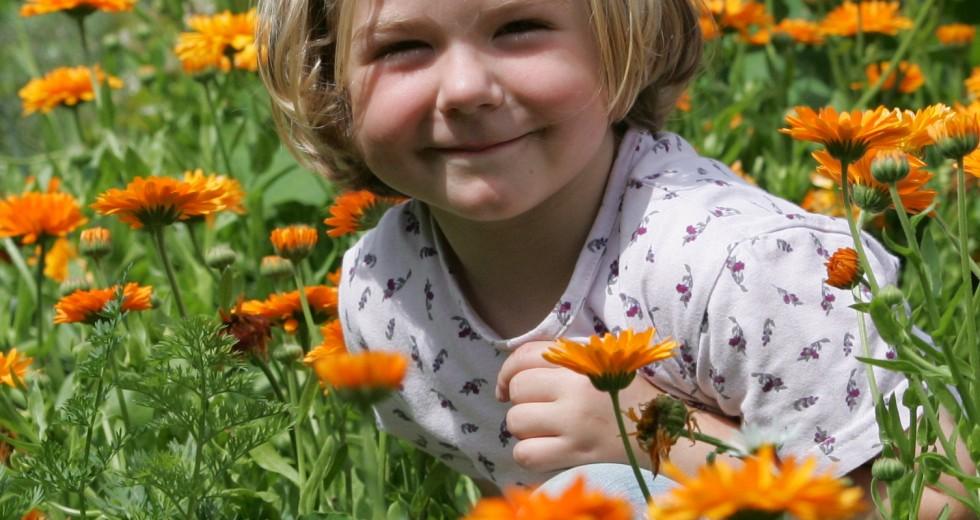 Der Eifler Mayischhof bietet aktive Landwirtschaft wie im Bilderbuch