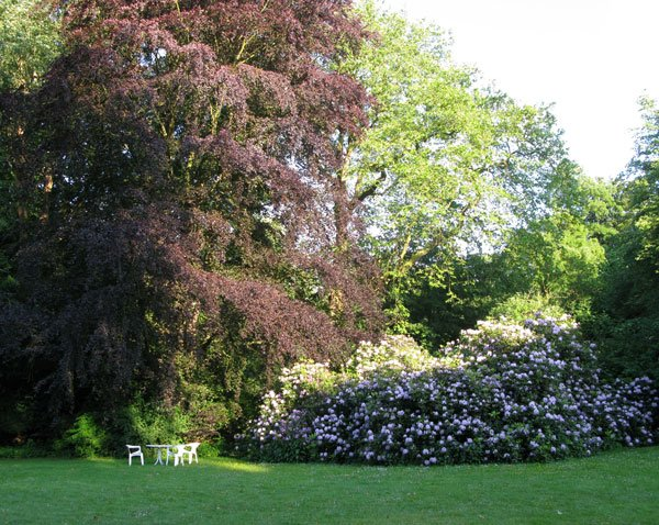 Ruheplätzchen unter Bäumen auf dem Gut Hohenhain