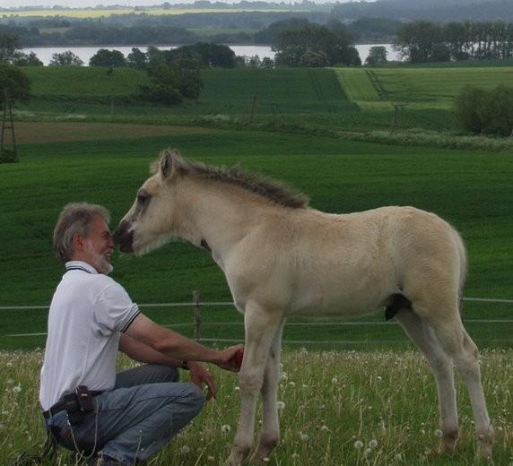 Reiterhofurlaub in der Uckermark