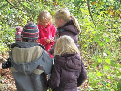 Sammeln im Herbst auf dem Ponyhof Grünberger
