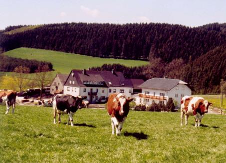 Schellen Hof