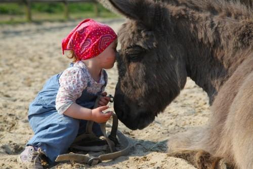 Ferien auf Selmas Ponyhof