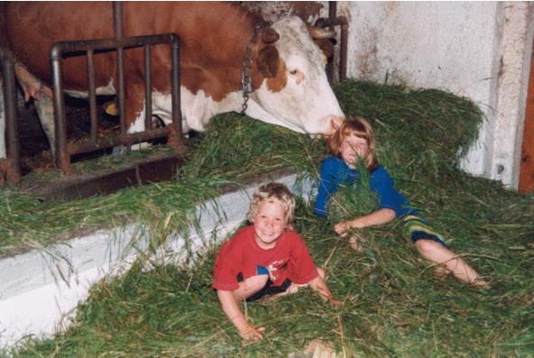 Spielen im Kuhstall