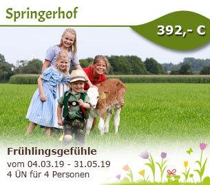 Frühlingsgefühle - Springerhof