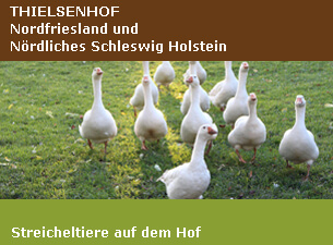 Thielsenhof