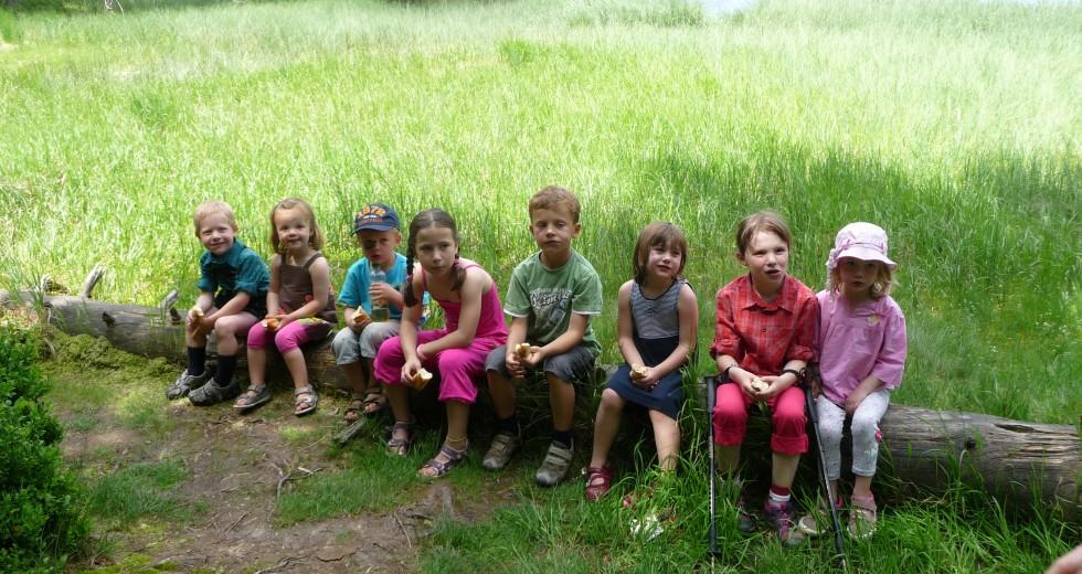 Bauernhof, Kinderparadies und Wellness