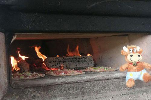 Weidererhof-Friederikes-Reisetagebuch--Pizzaofen
