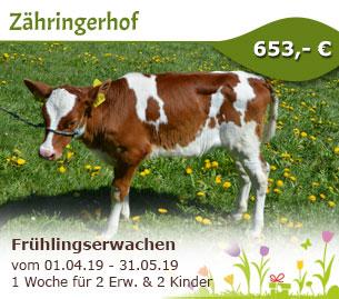 Frühlingserwachen - Zähringerhof