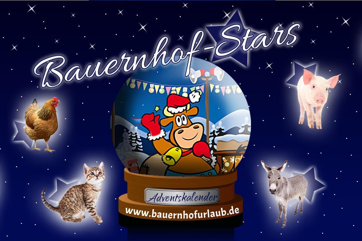 Bauernhofstars-Adventskalender 2019