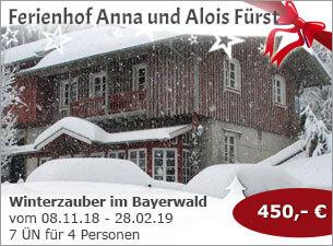 Ferienhof Anna und Alois Fürst - Winterzauber im Bayerischen Wald