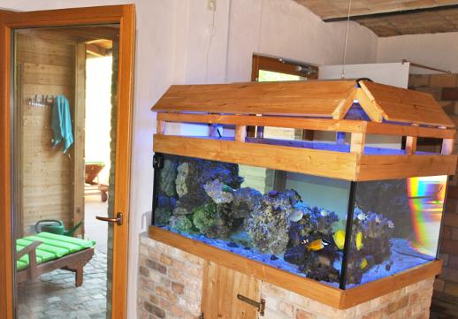 Farbenfrohes Aquarium