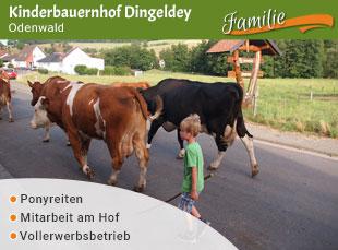Kinderbauernhof Dingeldey - Jubiläumstipp