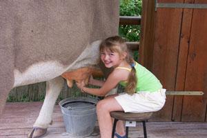 Flunkeblunk auf dem Bauernhof – eine tolle Lern- und Abenteuergeschichte für Kinder