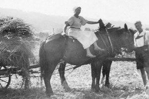 Ferien auf dem Bauernhof (Teil 1) – Auszeit mit Tradition und viel Emotion