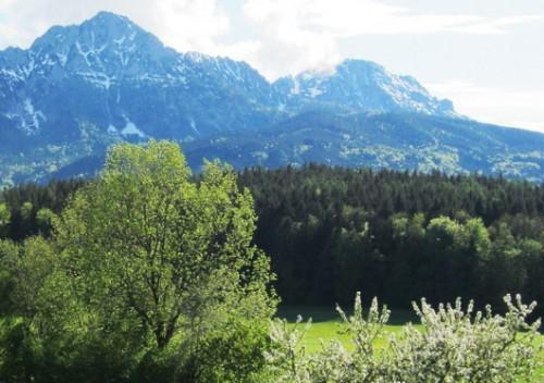 Landschaft rund um den Kochhof