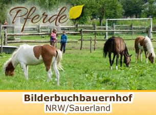 Bilderbuchbauernhof