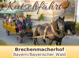 Kutschfahrten auf dem Brechenmacherhof