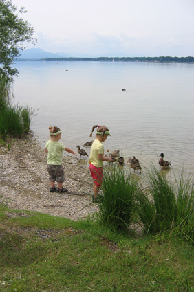 Entenfüttern am Chiemsee