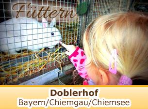 Mehr Informationen zum Doblerhof