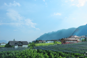 Weinanbau in Südtirol – Eppan an der Südtiroler Weinstraße