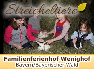 Weitere Informationen zum Familienferienhof Wenighhof