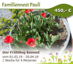Der Frühling kommt - Familiennest Pauli