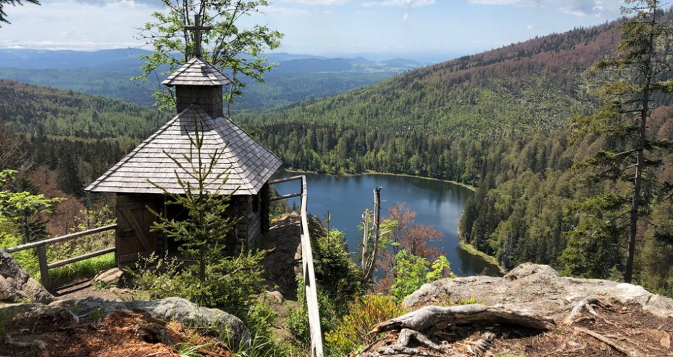 Im Herbst mit der Familie in den Bayerischen Wald zum Ferienbauernhof Kilger