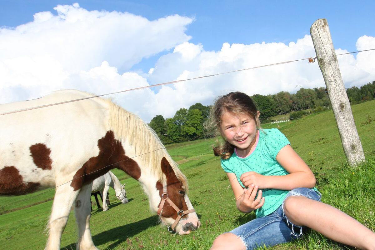Bauernhof-Abenteuer auf dem Ferienhof Kilger erleben
