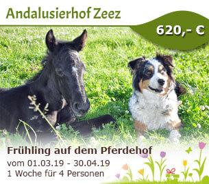 Frühlingserwachen auf dem Pferdehof - Andalusierhof Zeez