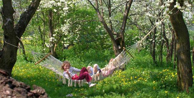 Hängematte im Obstgarten