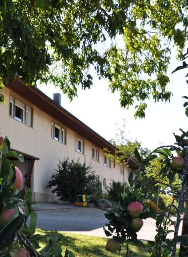Der Höhlerhof – Die Heimat für Ihren Familienurlaub am Bodensee!