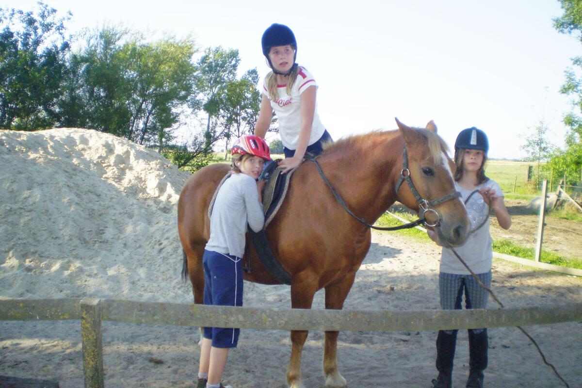 Ponyreiten - der Kindertraum