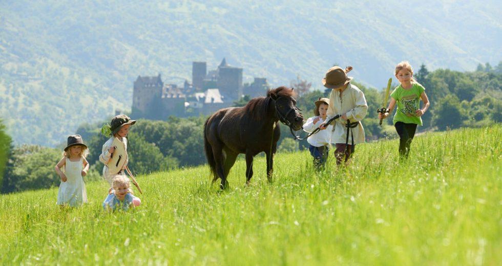 Hof Hardthöhe: Naturgenuss auf sonnigem Hochplateau