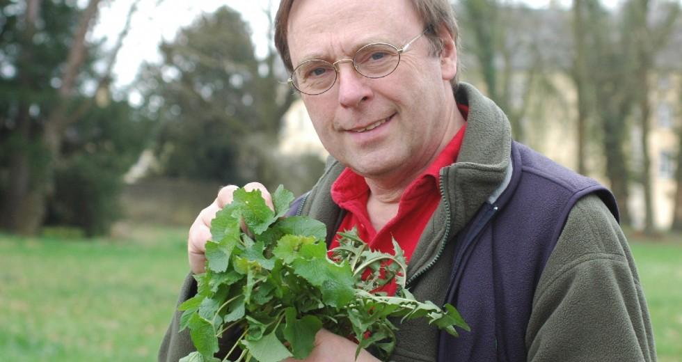 Interview mit Dr. Dirk Holterman von der Gundermann-Akademie – Kräuterpädagogen