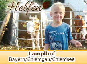 Mehr Informationen zum Lamplhof