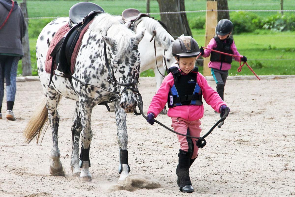 Glücksmomente für die Kleinen beim Pferdeführen - Gut Gaarz