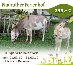 Frühjahrserwachen - Naurather Ferienhof