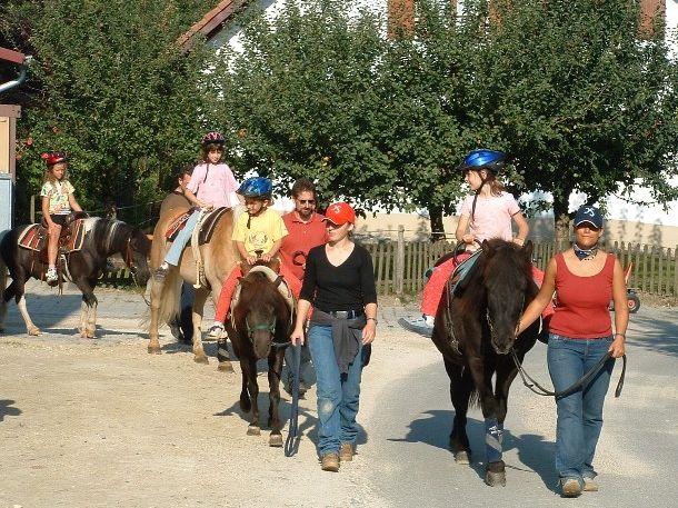 Reiterparadies in Bodenseenähe