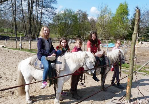Ponyreiten in der Gruppe