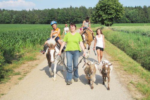 Wöchentliches Ponyreiten auf dem Rennerhof